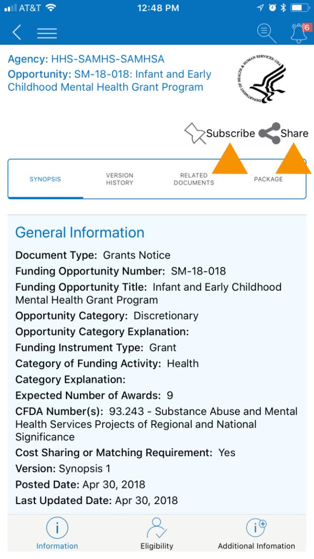Grants.gov app synopsis page